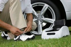 Audi quattro Golf Collection